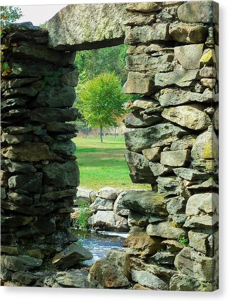 Stone Framed Tree Canvas Print by Heather Sylvia