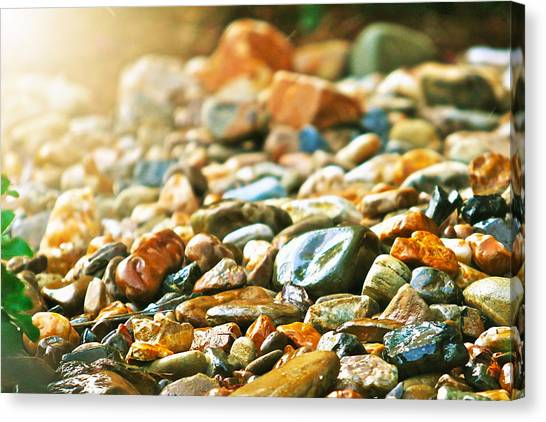 Stones Canvas Print by Debbie Sikes