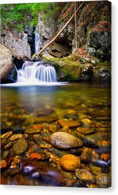 Stones In The Stream Canvas Print