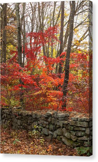 Stonewall A Blaze Canvas Print