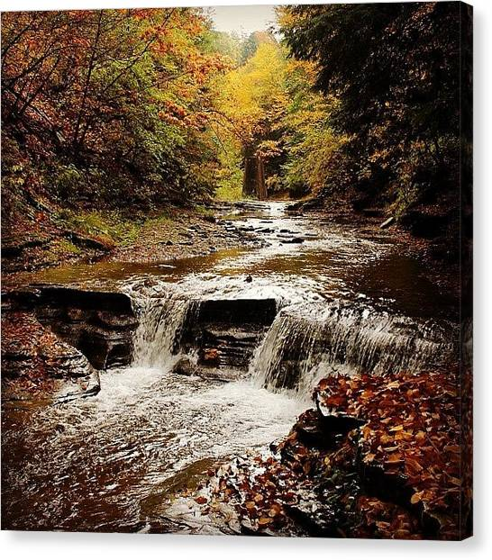Waterfalls Canvas Print - Stony Brook Gorge by Justin Connor