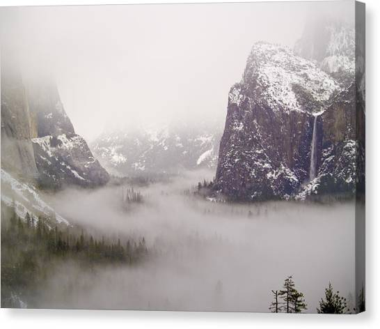 Storm Brewing Canvas Print