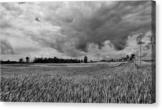 Storm Field - Canada Canvas Print