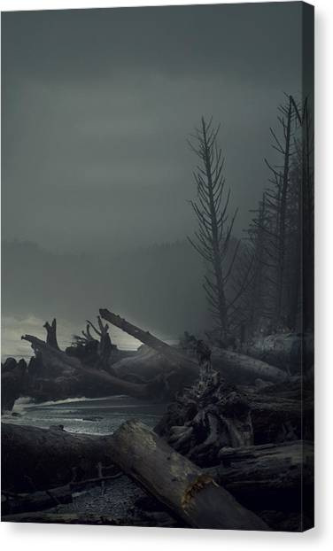 Storm Aftermath Canvas Print