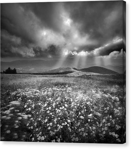 Storm Over Whitetop Mountain Canvas Print