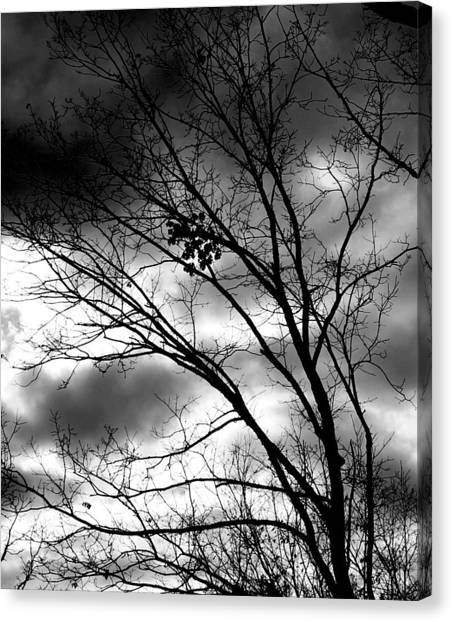 Canvas Print featuring the photograph Stormy Beauty by Candice Trimble