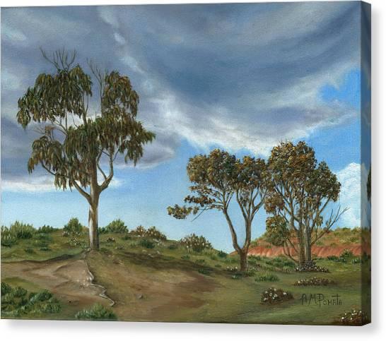 Stormy Eucalyptus Canvas Print