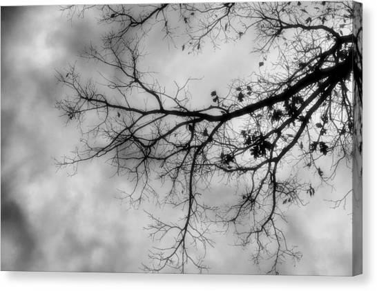 Stormy Morning In Black And White Canvas Print