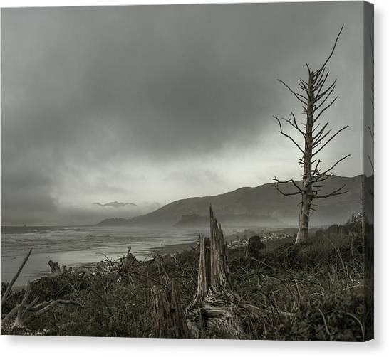 Stormy Oregon Coast Canvas Print by Shawn St Peter