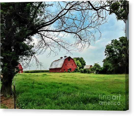 Stovall Farms In The Mississippi Delta Canvas Print