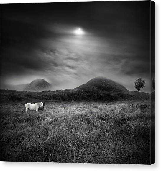 Ireland Canvas Print - Strange Place To Be by Martin Marcisovsky