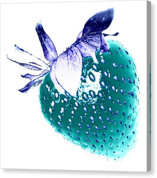 Rights Managed Images Canvas Print - Strawberry by Jenny Hudson