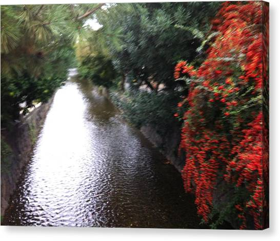Stream In Kyoto  Canvas Print