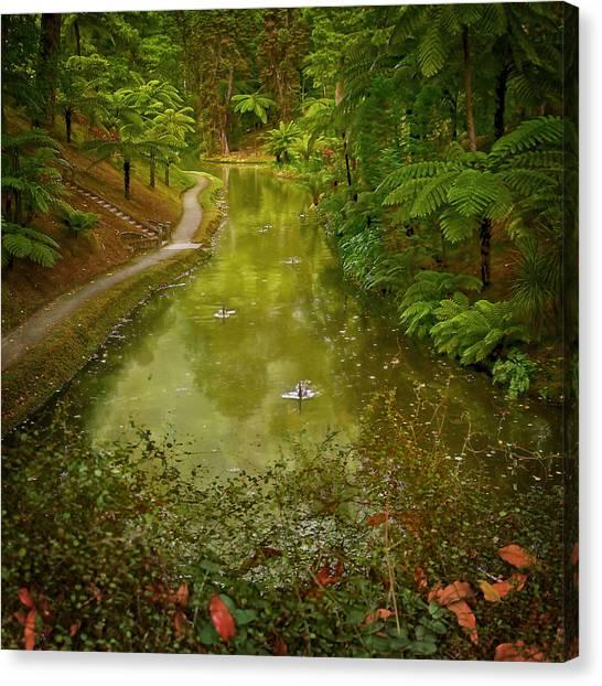 Stream In Paradise Canvas Print