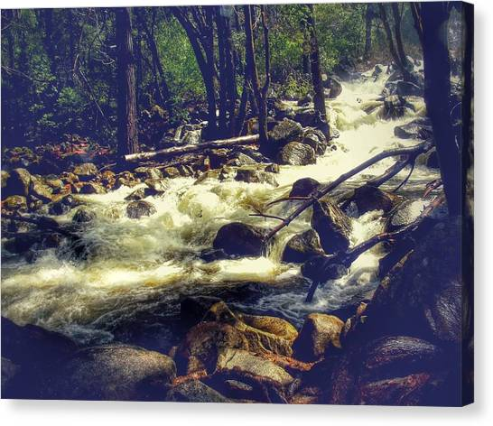 Stream Of Consciousness- Yosemite Canvas Print by Laura Mazzuca