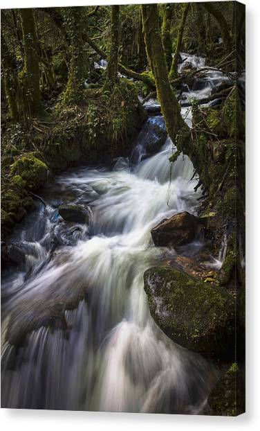 Stream On Eume River Galicia Spain Canvas Print