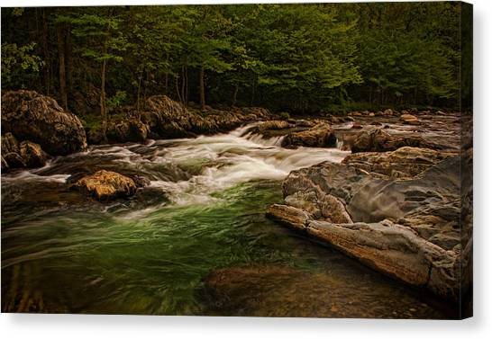 Stream Within The Trees Canvas Print