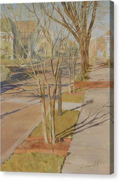 Street Trees With Winter Shadows Canvas Print