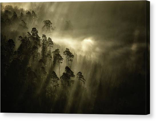 Atmosphere Canvas Print - Streiflichter by Peter Wagner