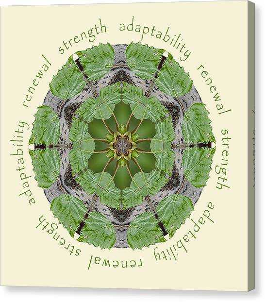 Strength Mandala 1 Canvas Print