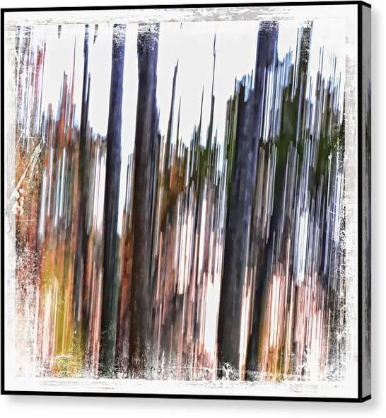 Striation Canvas Print