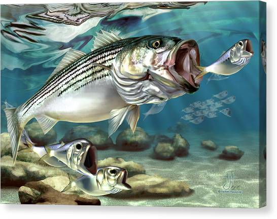 Striper - The True Monster Of Montauk Canvas Print