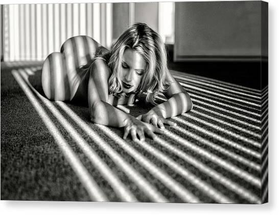 Empty Canvas Print - Stripes by Jan Slotboom