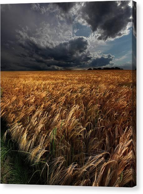 Storm Clouds Canvas Print - Strohgaeu by Franz Schumacher