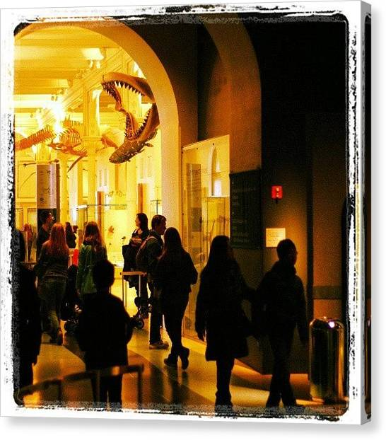 Jaws Canvas Print - Strolling @amnh.  #museum #bones by Antonio DeFeo