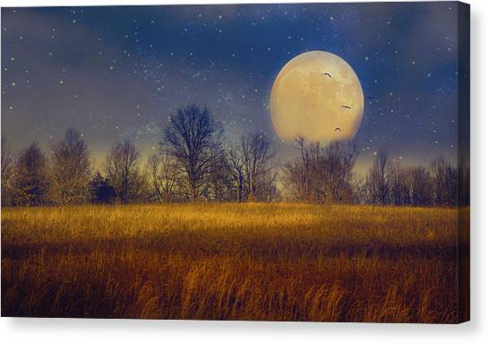 Struck By The Moon Canvas Print