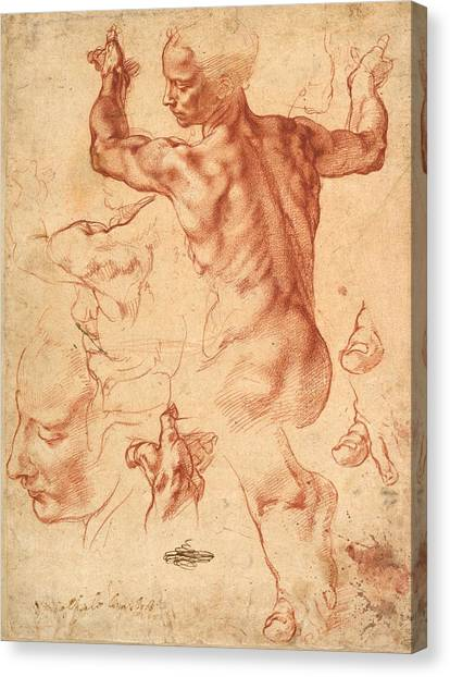 The Vatican Museum Canvas Print - Studies For The Libyan Sibyl by Michelangelo Buonarroti