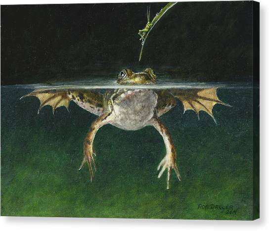 Bullfrogs Canvas Print - Study Of A Grasshopper by Dreyer Wildlife Print Collections
