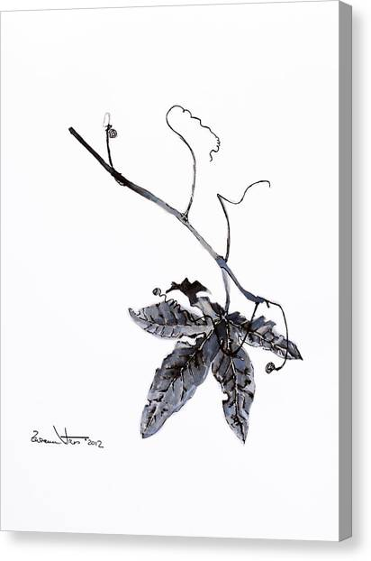 Canvas Print - Study Of Leaf In Ink by Zuzana Vass