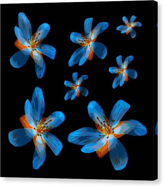 Study Of Seven Flowers #2 Canvas Print