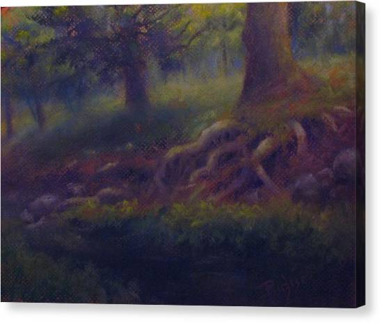 Study Of Sycamore Roots Canvas Print