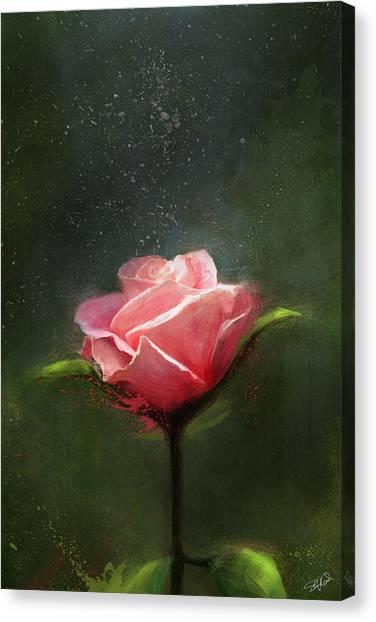Subtle Beauty Canvas Print