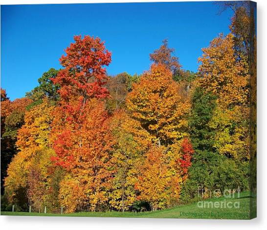 Such A Colorful Day 2 Canvas Print
