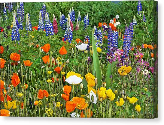 Such Beauty Canvas Print