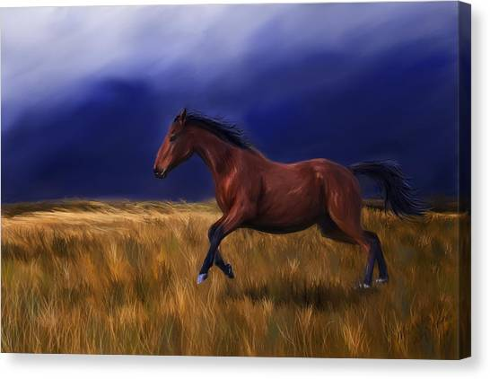 Bay Thoroughbred Horse Canvas Print - Galloping Horse Painting by Michelle Wrighton