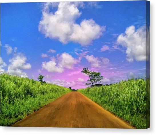 Mauna Loa Canvas Print - Sugar Cane Sunrise by Dominic Piperata