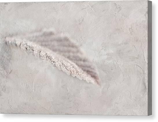 Sugar Crush Canvas Print