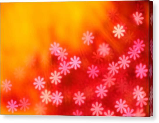 Sugar Magnolia Canvas Print