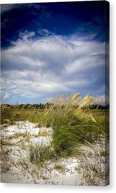Thunder Bay Canvas Print - Sugar Sand And Sea Oats by Marvin Spates