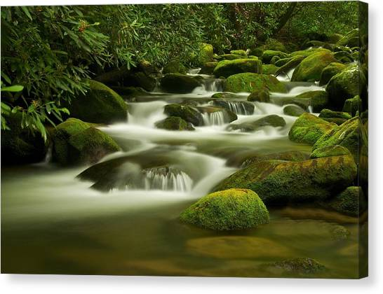 Summer Along The Roaring Fork Canvas Print by Keith Nicodemus