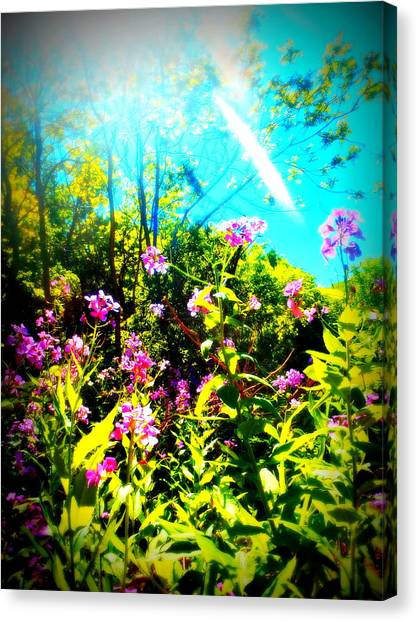 Summer Beauty Canvas Print