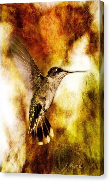 Hummingbird - In Flight - Summer Beauty Canvas Print by Barry Jones