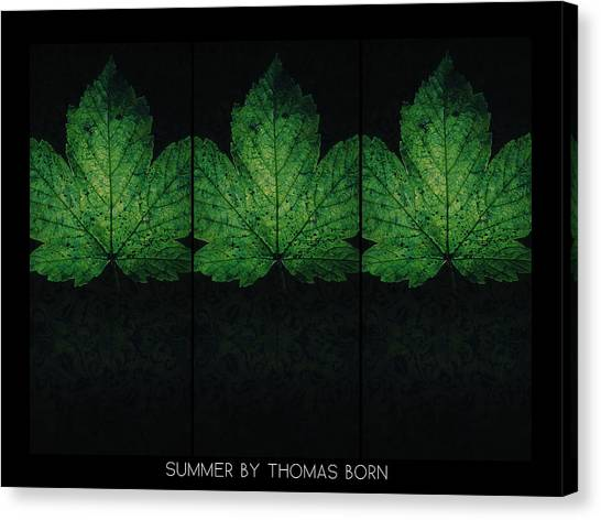 Summer By Thomas Born Canvas Print