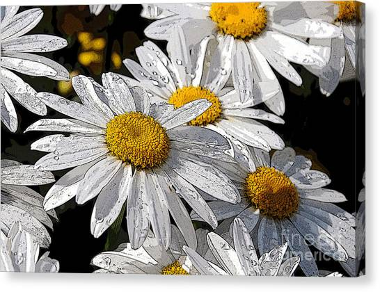 Summer Daisies Canvas Print