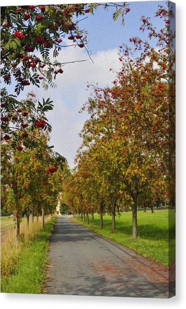 Fruit Trees Canvas Print - Summer Day In The Country by Aged Pixel