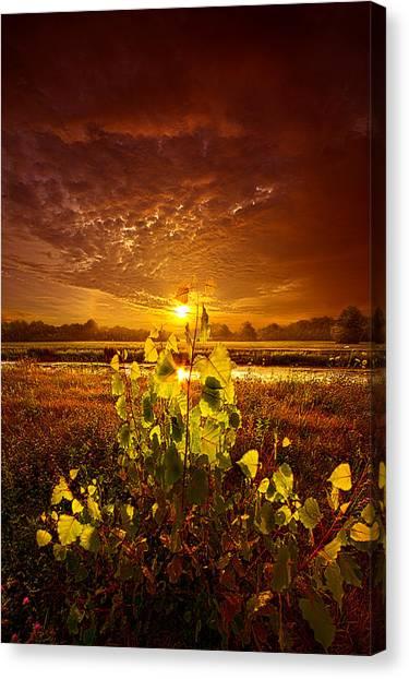 Light Rail Canvas Print - Summer Dreams Drifting Away by Phil Koch